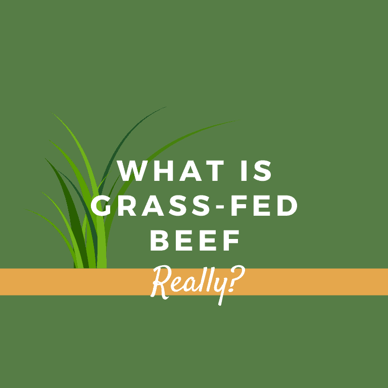 What Is Grass Fed Beef Really?